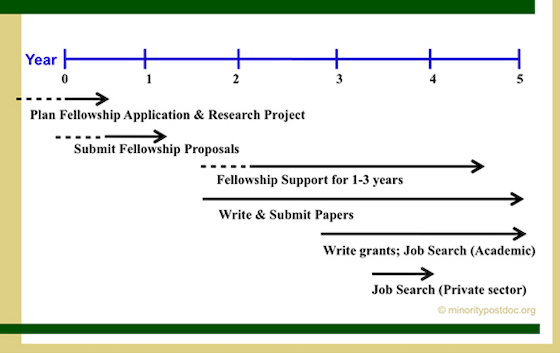 schematic of postdoc career milestones over 5-year period
